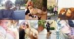 Παγκόσμια Ημέρα των Ζώων: 10+1 celebrities που πόζαραν με τα ζωάκια τους!